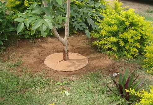 Coir Mulch Mats Granite Block Suppliers Madurai Granite